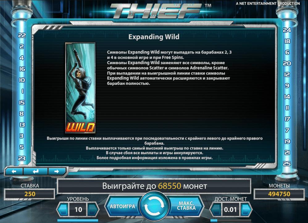thief-wild